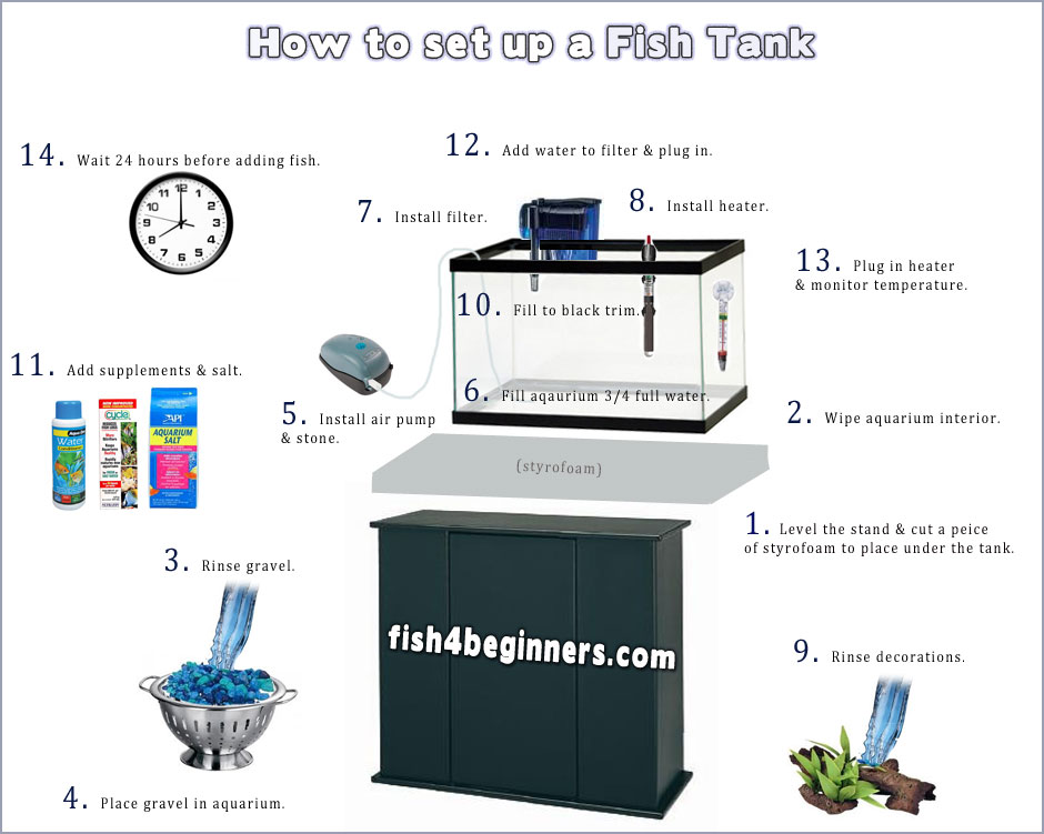 Step by step picture guide on how to set up a fish tank.